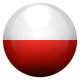 Poljski jezik
